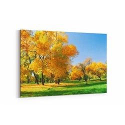 Ağaçlar ve Gökyüzü Kanvas Tablosu