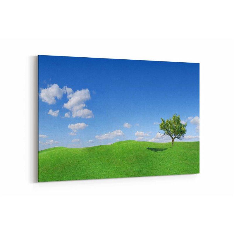 Mavi Gökyüzü ve Ağaç Kanvas Tablosu