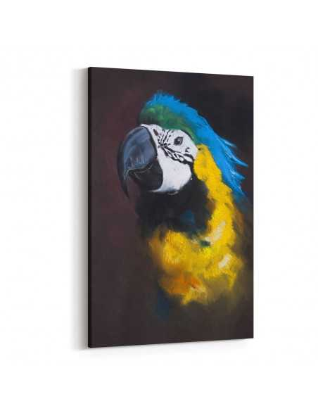 Çizim Papağan Kanvas Tablo