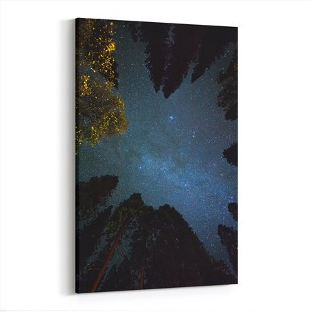 Orman ve Gökyüzü Kanvas Tablosu