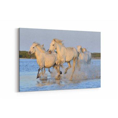 Suda Koşan Atlar Kanvas Tablosu