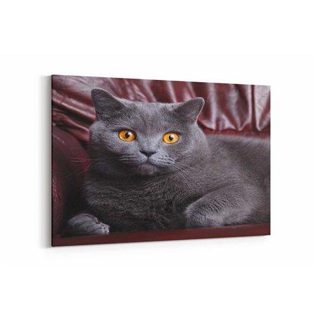 Şaşkın Kedi Kanvas Tablosu