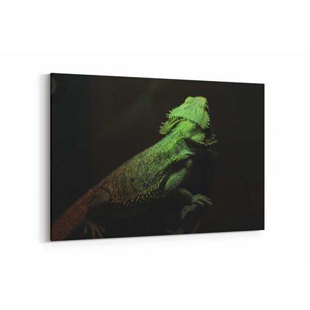 İguana Kanvas Tablosu