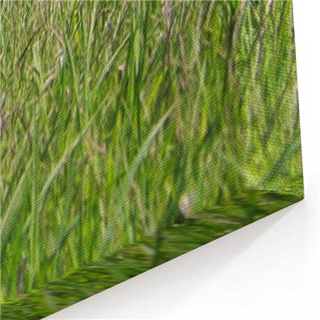 Çimlerde Koşan At Kanvas Tablosu