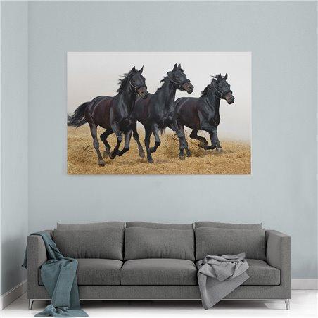 Siyah Koşan Atlar Kanvas Tablosu
