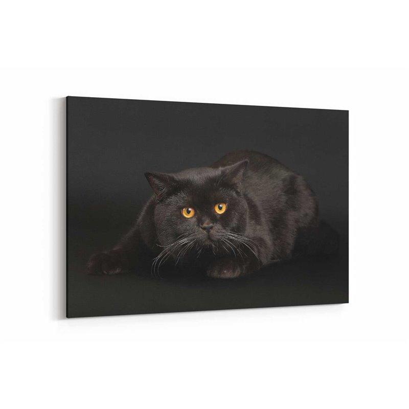 Kara Kedi Kanvas Tablosu