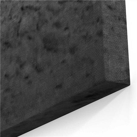 Siyah Beyaz Koşan At Kanvas Tablosu