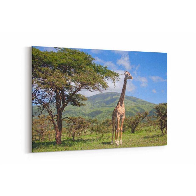 Ağaçlar ve Zürafa Kanvas Tablosu