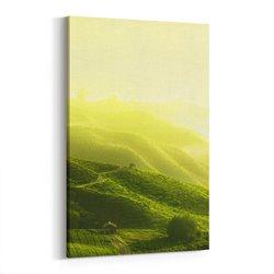 Tepeler Kanvas Tablosu