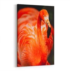 Flamingo Kanvas Tablosu