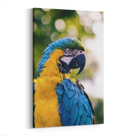 Papağan Kanvas Tablosu