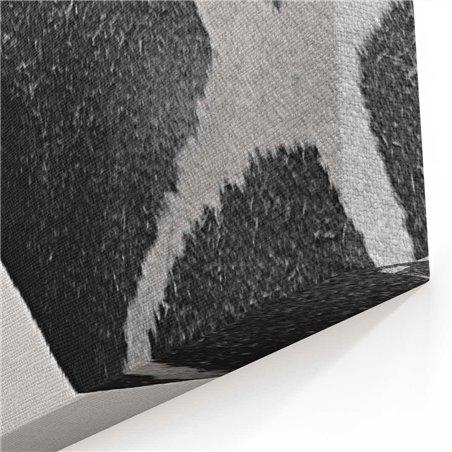 Siyah Beyaz Zürefa Kanvas Tablo