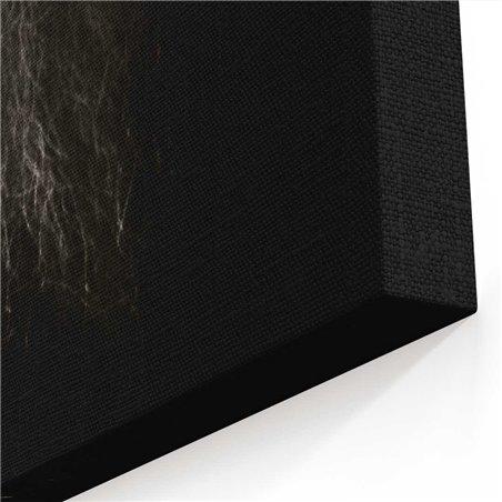 Siyah Beyaz Aslan Kanvas Tablo