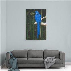 Mavi Penguen Kanvas Tablosu