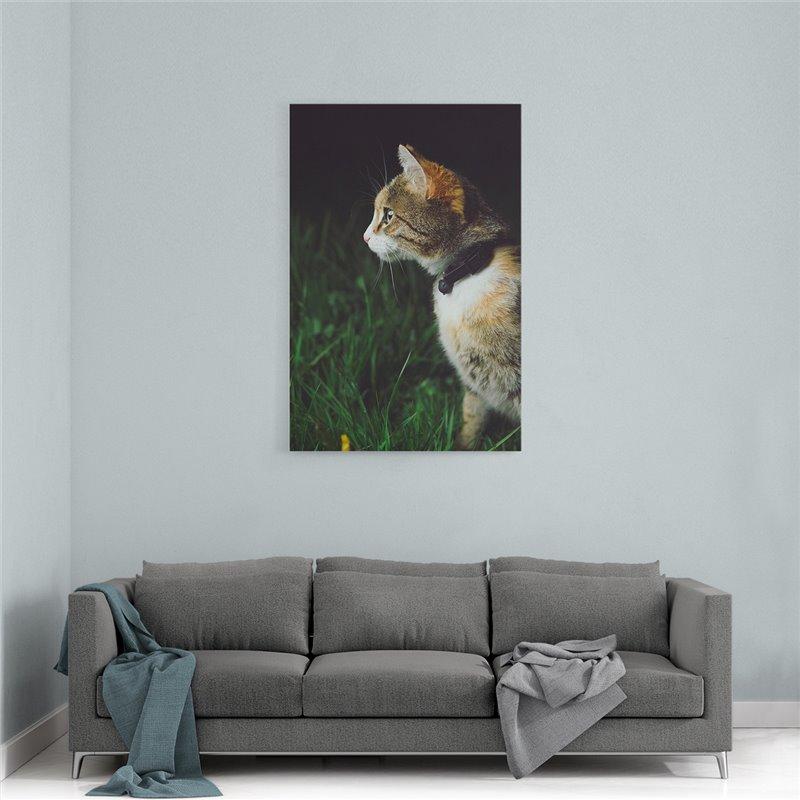 Kedi Kanvas Tablosu