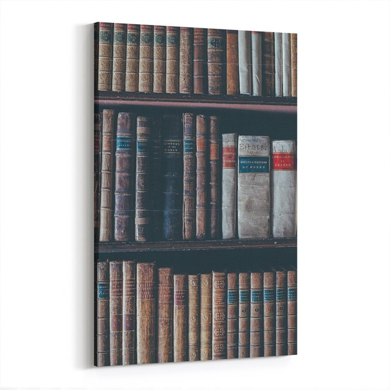 Vintage Kütüphane Kanvas Tablo