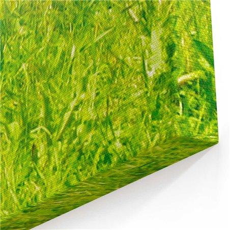 Çimler Üzerinde Beyaz At Kanvas Tablosu