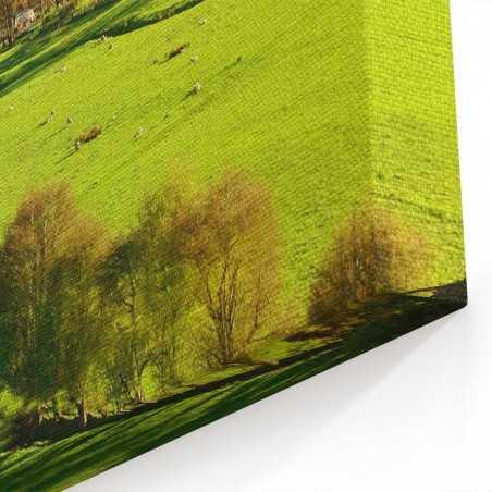 Yeni Zellanda Yeşil Yaşam Kanvas Tablo