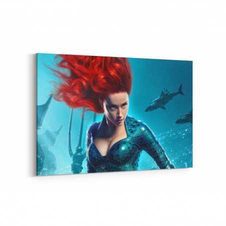 Aquaman Mera Kanvas Tablo