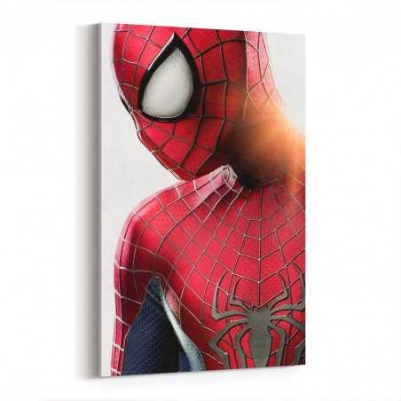 Örümcek Adam Kanvas Tablo