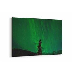 Kutup Işıkları ve Ağaç Kanvas Tablosu