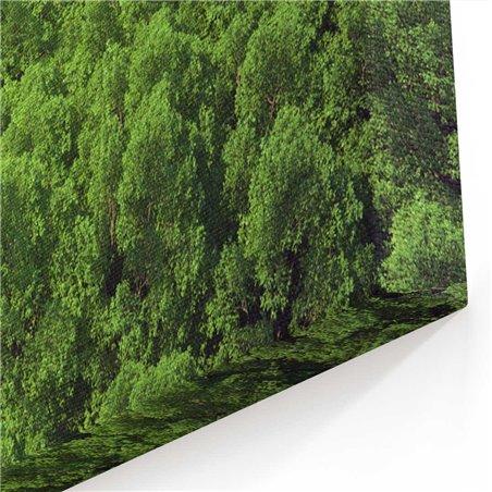 Ormanın Kalbi Kanvas Tablosu