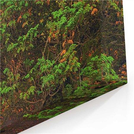 Yeşil Orman Yolu Kanvas Tablosu